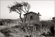  CAPTAIN SILVA - Rural Idyll - Sardinia