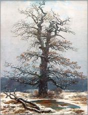 Caspar David Friedrich - Eiche im Schnee