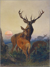 Charles Jones - A Stag with Deer in a Wooded Landscape at Sunset, 1865