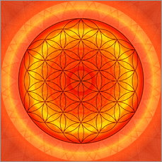 Christine Bssler - Flower of Life 2