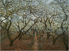 Claude Monet - Bl�hender Obstgarten