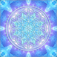  Dolphins DreamDesign - Flower of Life  - Dolphin Awareness