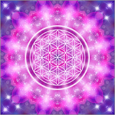  Dolphins DreamDesign - Flower of Life - Love Essence