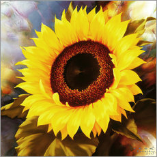Igor Levashov - sunflower