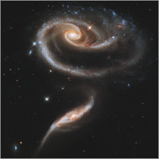 Mark Stevenson - Arp 273 interacting galaxies in Andromeda.