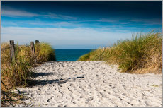 Reiner Wrz - Ostsee - Dnenweg zum Strand