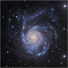 Robert Gendler - M101, The Pinwheel Galaxy in Ursa Major