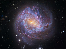 Robert Gendler - Messier 83, the Southern Pinwheel Galaxy.