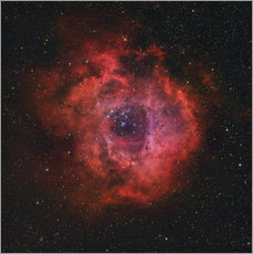 Rolf Geissinger - The Rosette Nebula