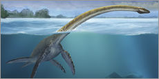Sergey Krasovskiy - A Elasmosaurus platyurus swims freely in prehistoric waters.