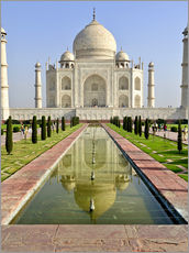 Steve Roxbury - The Taj Mahal, Agra, Uttar Pradesh, India, Asia,