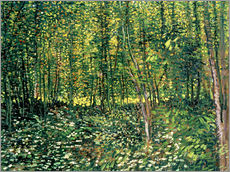 Vincent van Gogh - Trees and Undergrowth