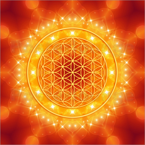 flower of life golden lightenergy posters by dolphins. Black Bedroom Furniture Sets. Home Design Ideas