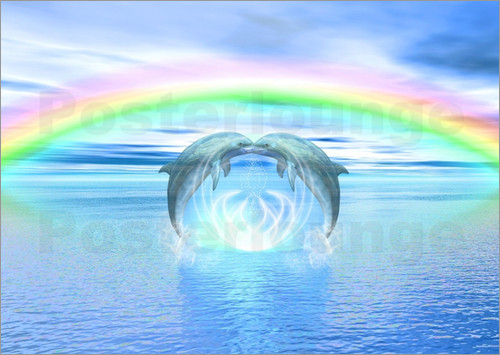 Dolphins Rainbow Healing Posters By Dolphins Dreamdesign