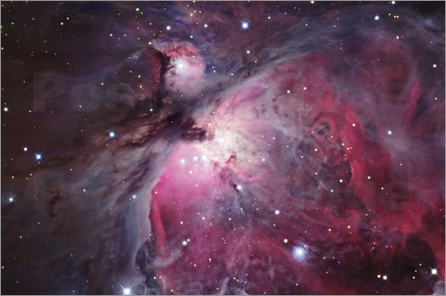 Robert Gendler - Orion-Nebel