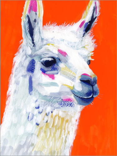 Premium-Poster Pop Art Lama