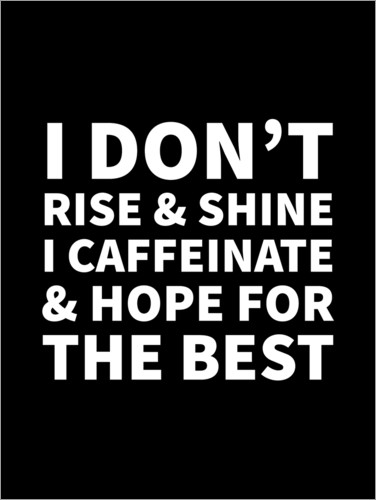 Premium-Poster I Don't Rise and Shine I Caffeinate and Hope for the Best