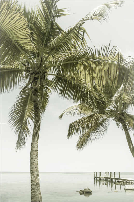 Premium-Poster Traumstrand in Florida