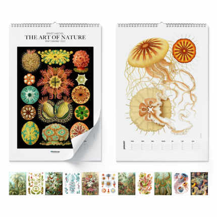 Wandkalender Ernst Haeckel, The Art Of Nature 2020