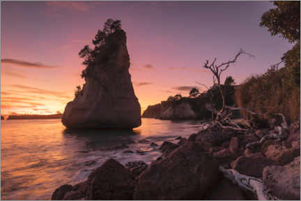 Premium-Poster  Cathedral Cove bei Sonnenaufgang - Markus Lange