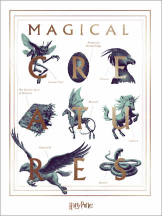 Premium-Poster  Harry Potter - Magical Creatures