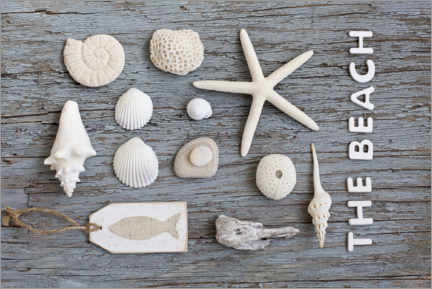 Holzbild  Die Beach Nature Collage - Andrea Haase Foto