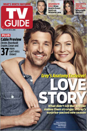 Alubild  Grey's Anatomy - Love Story - TV Guide