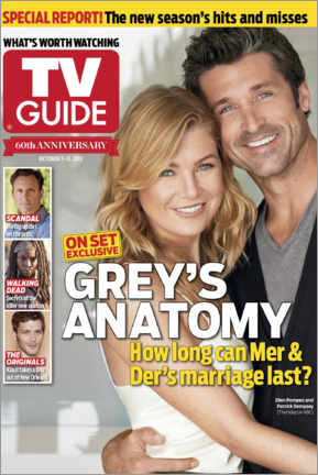 Hartschaumbild  Grey's Anatomy - Meredith and Derek - TV Guide