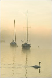 Ashley Cooper - A misty morning over Lake Windermere, UK