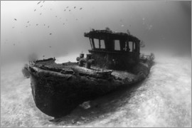 Brook Peterson - A tugboat wreck in the Bahamas.