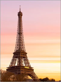 Mike Clegg Photography - Beautiful Light in Paris