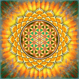 Dirk Czarnota - Flower of Life - Yellow Lotus