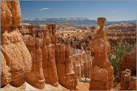 Thomas Klinder - Bryce Canyon