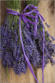 John & Lisa Merrill - Bunch of lavender to dry in the shed