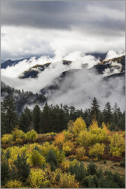 Peter Langer - Clouds in the forested valleys between Mestia and Ushguli, Upper Svaneti, Samegrelo-Zemo Svaneti, Ge