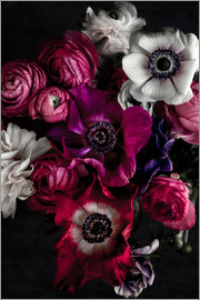 Mareike Böhmer Photography - Dark Flowers 1