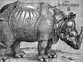 Albrecht Dürer - The Rhinoceros