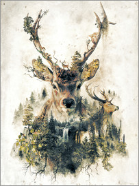 Barrett Biggers - deer2