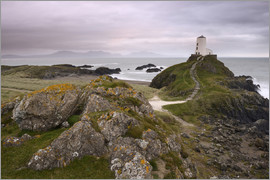 Stephen Spraggon - The lighthouse at the edge of Llanddwyn Island