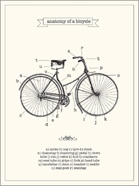 Nory Glory Prints - Vintage parts of a Bicycle anatomy