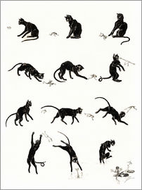 Théophile-Alexandre Steinlen - The cat and the frog