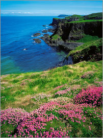 The Irish Image Collection - Dunluce Castle, Irland