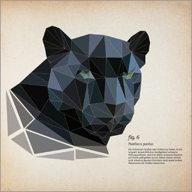 Labelizer - fig6 Polygonpanther Quadrat