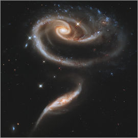 Stocktrek Images - Arp 273, deux galaxies en interaction dans la constellation d'Andromède