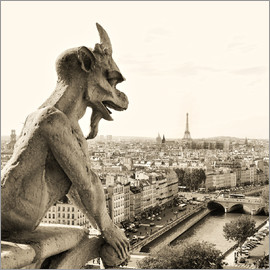 Gargoyle over Paris