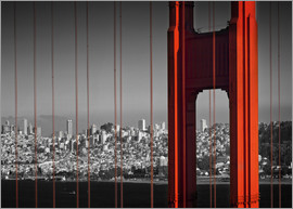 Melanie Viola - Golden Gate Bridge im Detail