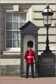 Stuart Black - Grenadier Guardsman outside Buckingham Palace, London, England, United Kingdom, Europe