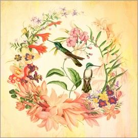 Mandy Reinmuth - Hummingbird II