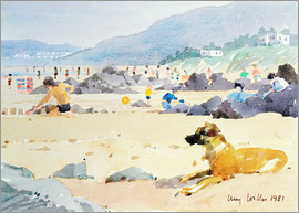 Lucy Willis - Hund am Strand, Woolacombe