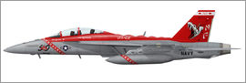 Illustration of an F/A-18F Super Hornet assigned to VFA-102.